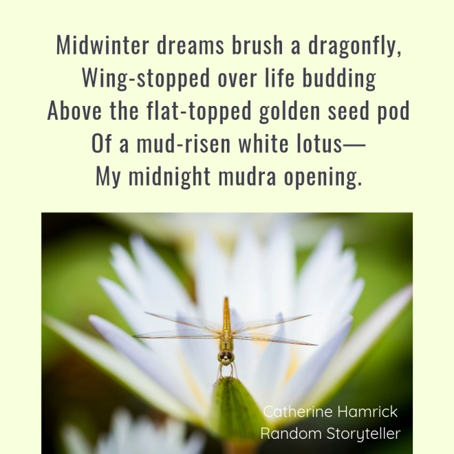 Poem_Midsummer Winter Snapshot_chamrickwriter_randomstoryteller_1080x1080