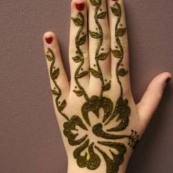 Simple Henna Flower Designs For Beginners Gardening Flower And