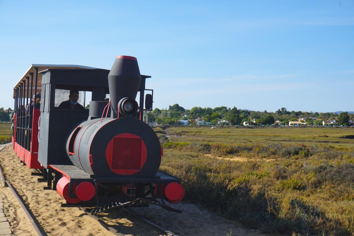 Este tren se construyó inicialmente para transportar la pesca de atún y actualmente sólo cumple esta función turística