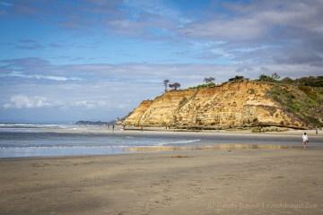 Dog Beach Del Mar