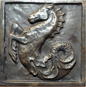 AN Seahorse