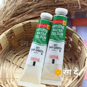 Buy Sap Green light artist watercolour shade online from Rang De Studio