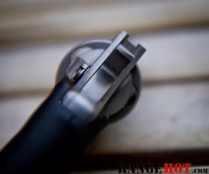 Charter Arms Bulldog-5