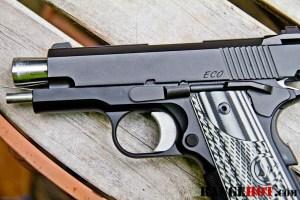 Dan Wesson ECO-12