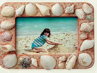 Seashell picture frame 1156x650