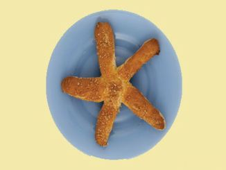 Sea_Star_Pretzels_JohnCollins_1156x650