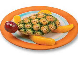 sea turtle fruit snack