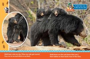Sloth Bear Ranger Rick Jr March 2017 3