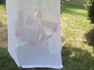 girl in mosquite net tent