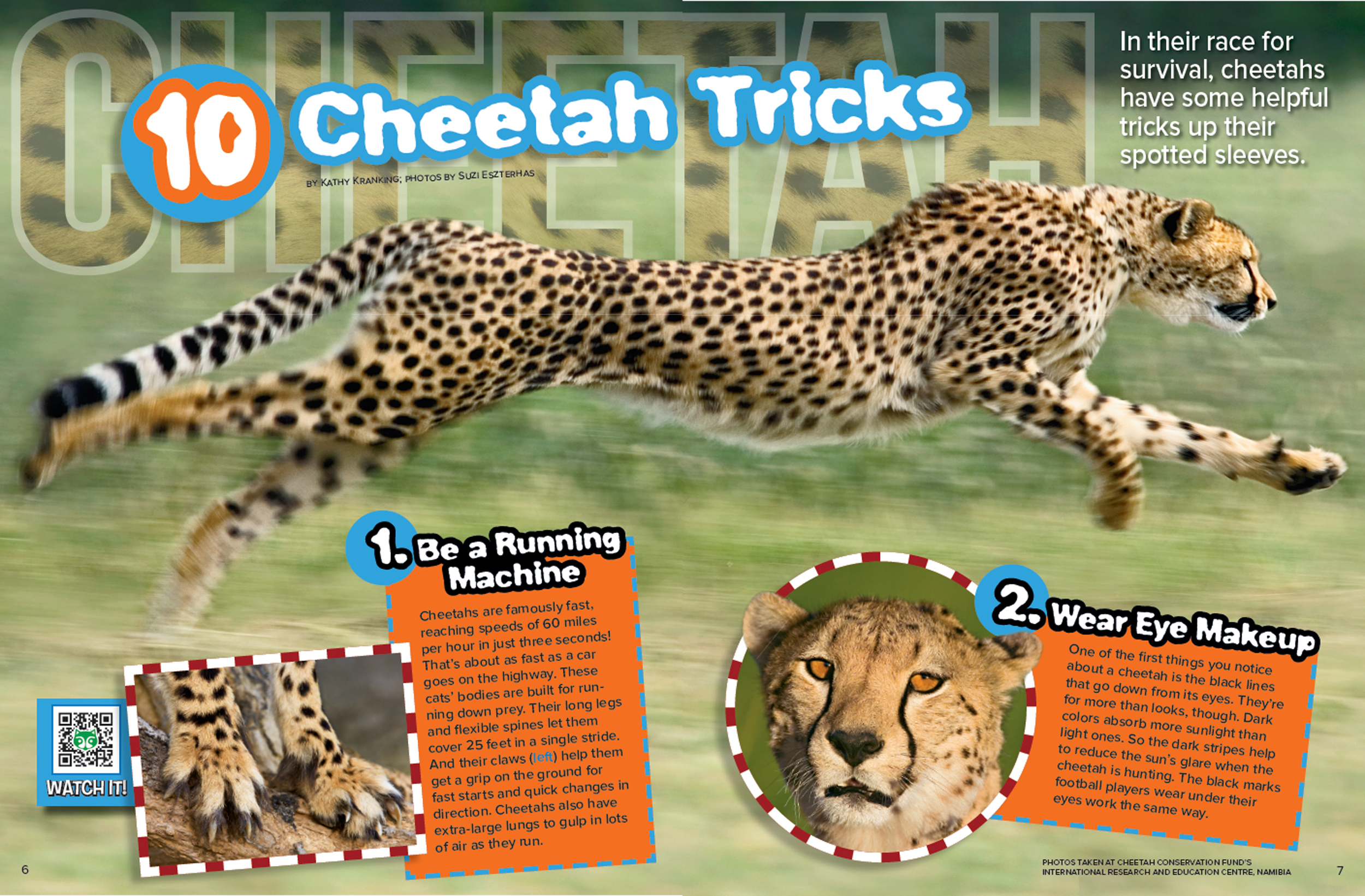 Cheetah Tricks Nwf Ranger Rick