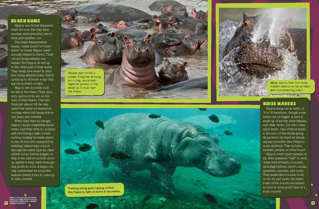 Ranger Rick Hippos May 2015 2
