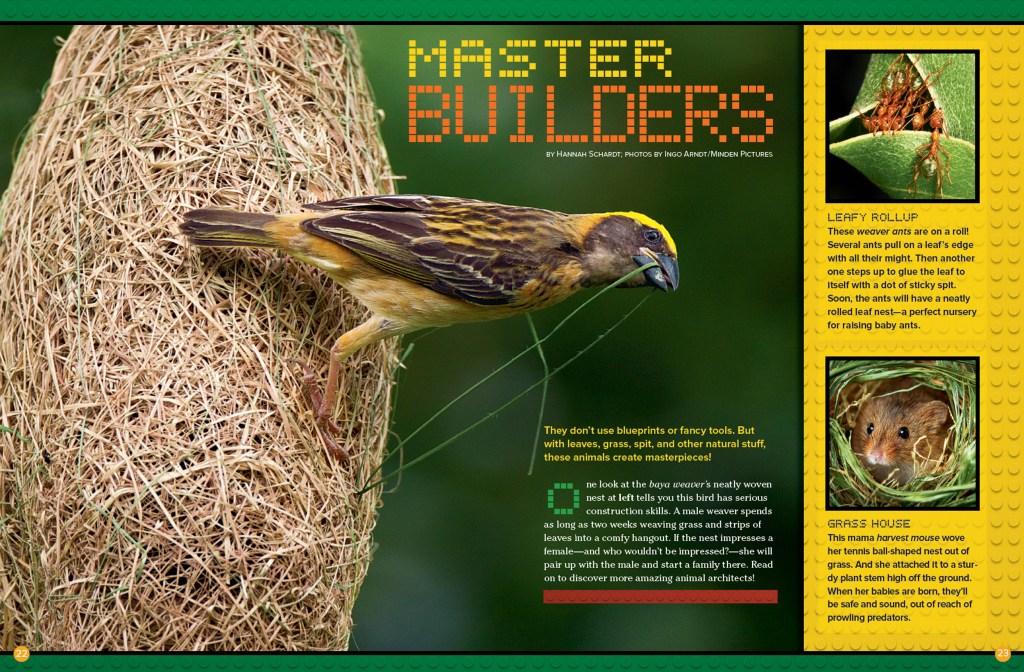 Ranger Rick Master Builders February 2015 1