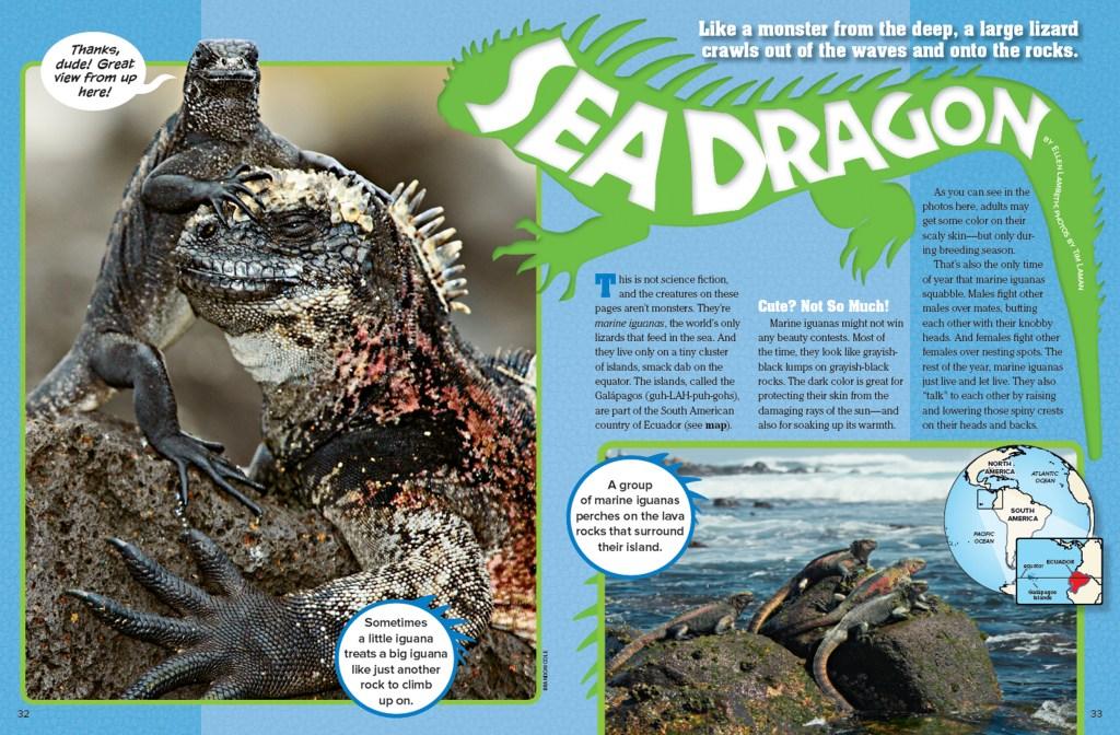 Ranger Rick Sea Dragon September 2015 1