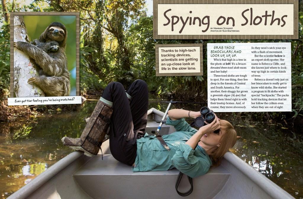 Ranger Rick Spying on Sloths September 2015 1