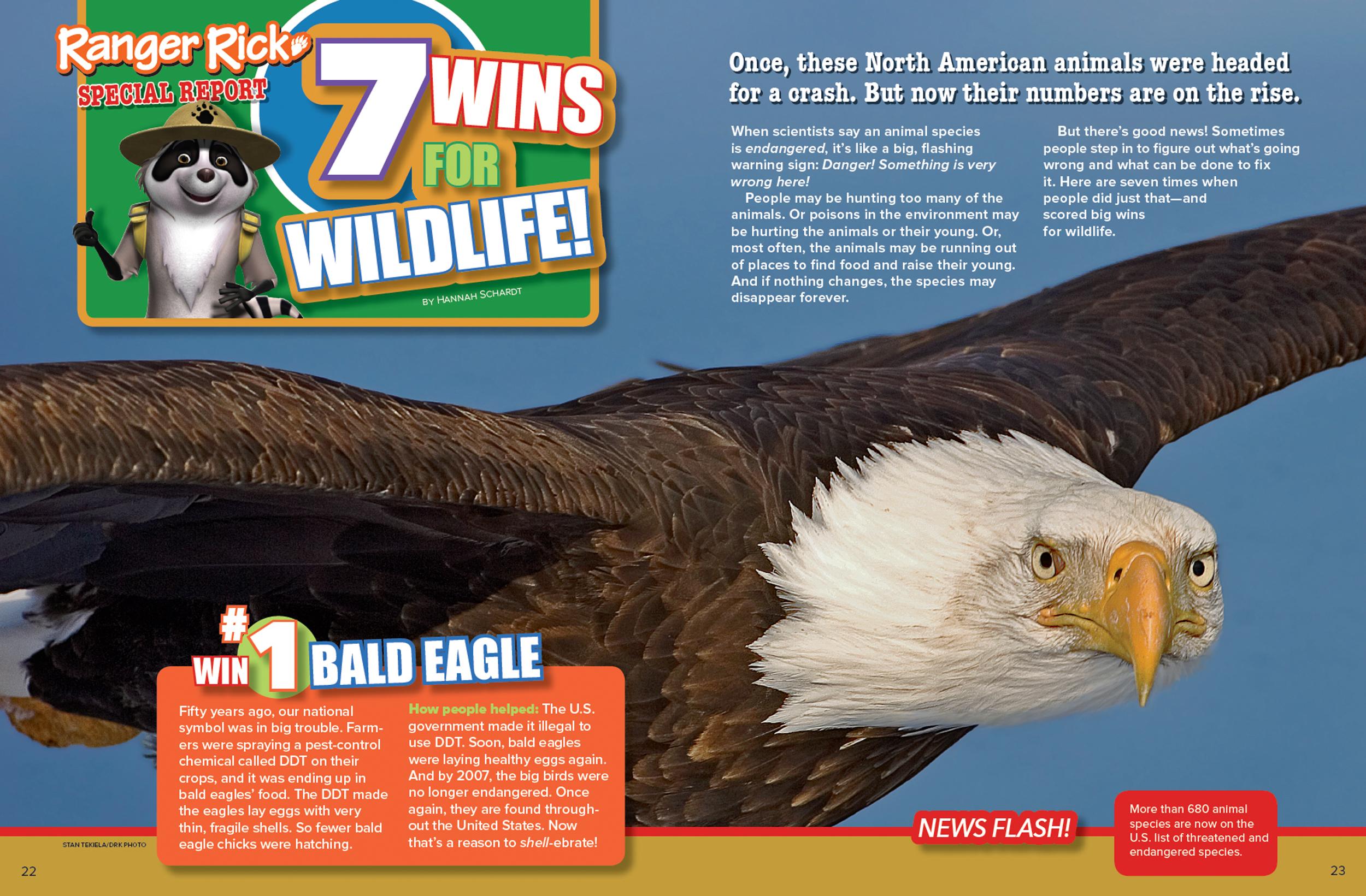 Wins for Wildlife! - NWF | Ranger Rick