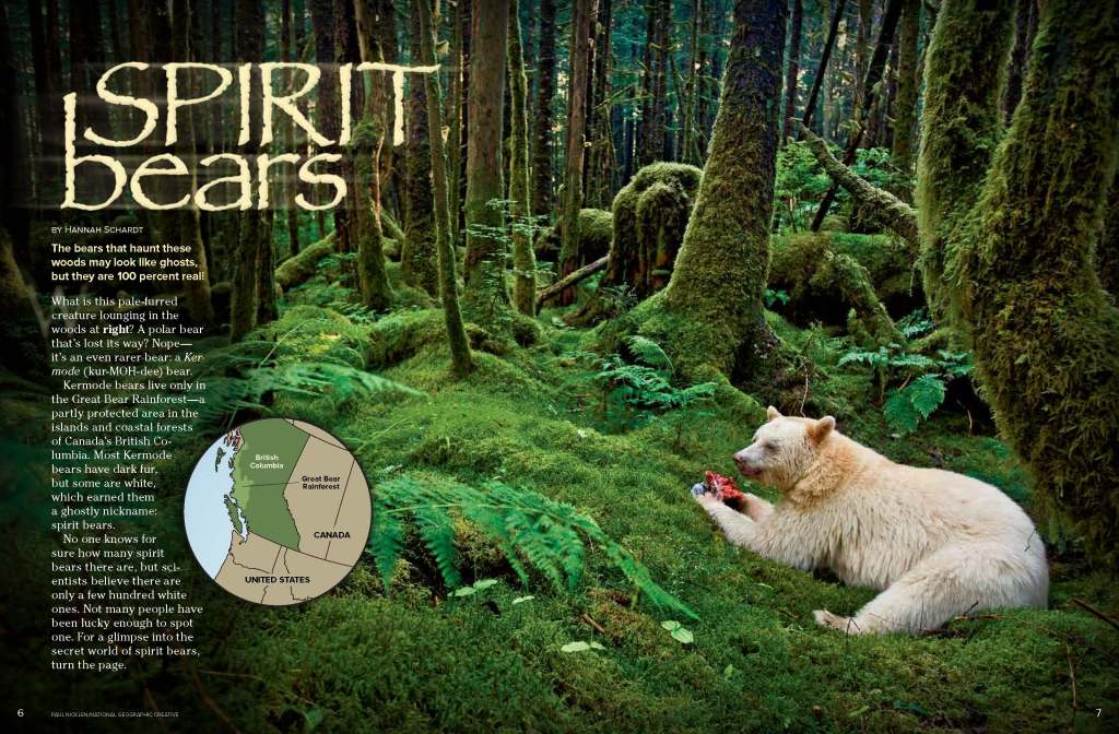 Ranger Rick Spirit Bears September 2014 1
