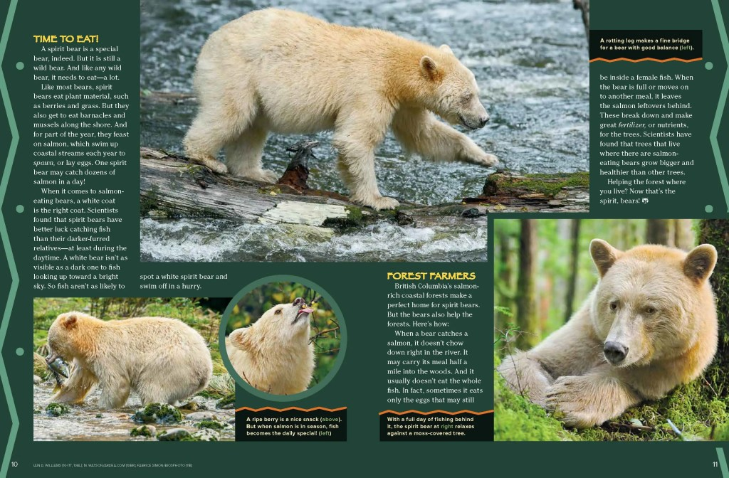 Ranger Rick Spirit Bears September 2014 3