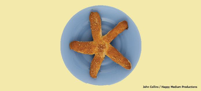 Sea star pretzel