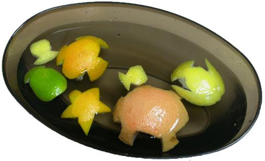 floating fruit fish