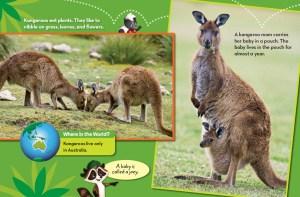 Ranger Rick Jr Kangaroo Island March 2015 3