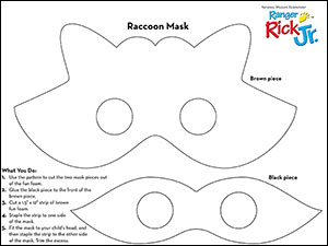 Raccoon mask pattern