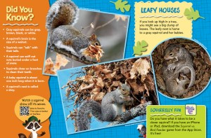 Ranger Rick Jr Squirrel Tales April 2015 3