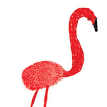 thumbrint flamingo