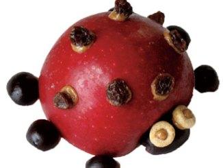 apple ladybug snack
