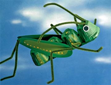 Buggy buddy
