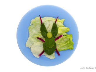 Leaf insect salad