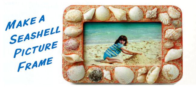 Decorate A Picture Frame With Seashells Nwf Ranger Rick