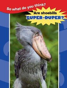 shoebird spread 4