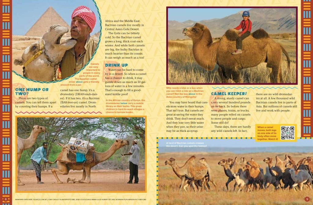 Camels Sept 2018 RR-2