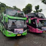 harga rental bus semarang
