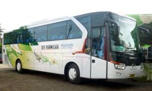 Bus Pariwisata Nugroho