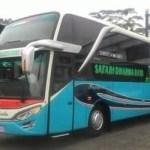 Bus Pariwisata Safari Dharma Raya