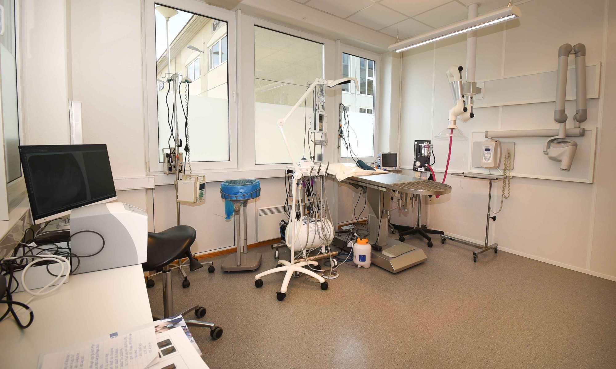 Tannbehandlingsrom Ranheim Dyreklinikk