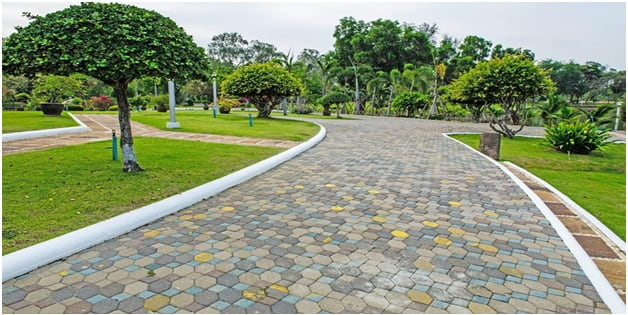 Hardscapes and Softscapes