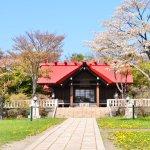 桜めぐり 2013 (御傘山神社)