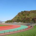 入江運動公園の紅葉