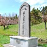 桜めぐり 2011 (南部陣屋史跡)