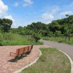 白鳥台北公園のスイレン