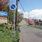 桜めぐり 2012 (牛太郎坂)