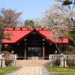 桜めぐり 2014 (御傘山神社)