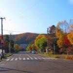 最近の散歩 (水元町から高砂町へ)