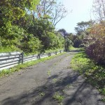 室蘭街中散歩(天沢小学校上から青空団地へ)