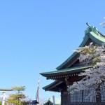 桜めぐり 2019(室蘭八幡宮)