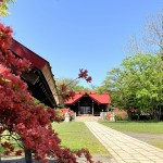 御傘山神社のツツジ 2021