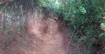 Ah ze nostalgia. This is a footpath adjacent to the Estate. It connects Muguga Green Road to Waiyaki Way.