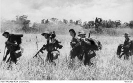 1942-11-11. NEW GUINEA. ALLIED TROOPS PREPARE TO ATTACK BUNA. AUSTRALIAN SCOUTS MOVE AHEAD TO THE MAIN FORCES.